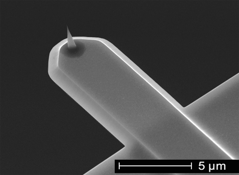 NanoWorld USC for high-speed AFM