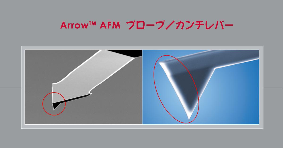 NanoWorld社製 Arrow AFMプローブ
