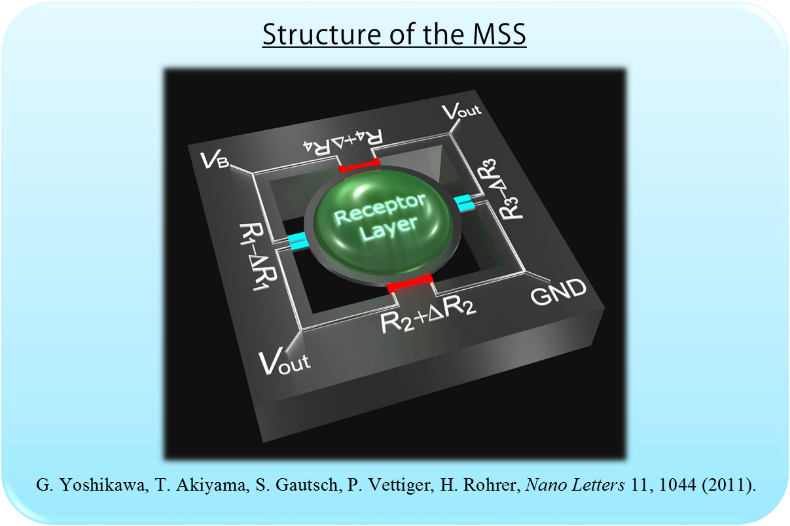 MSS structure